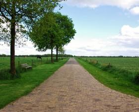 Landweg in Gees